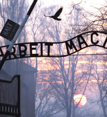 an analysis of holocaust denial Holocaust denial trumps freedom of expression such a distinction implies the assumption that holocaust denial is likely to and analysis from israel and.