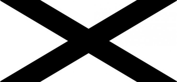 """Southern Nationalist"" Flag"