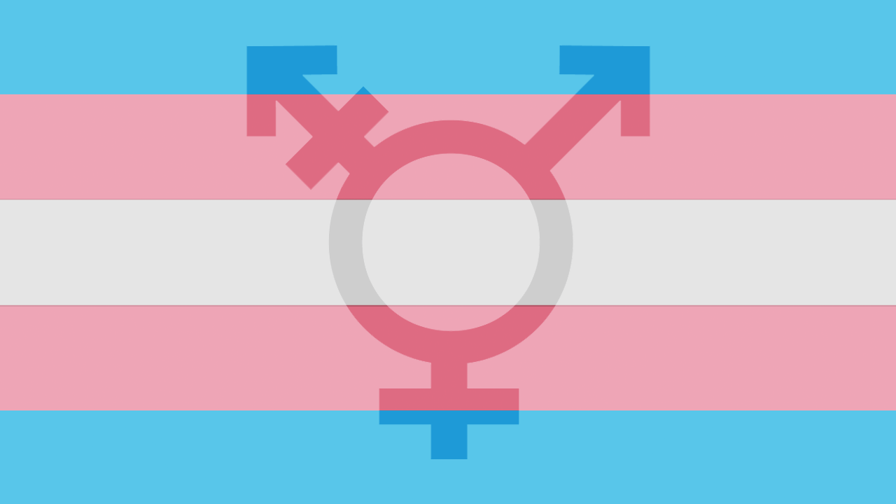 Transgender inmate rights in michigan